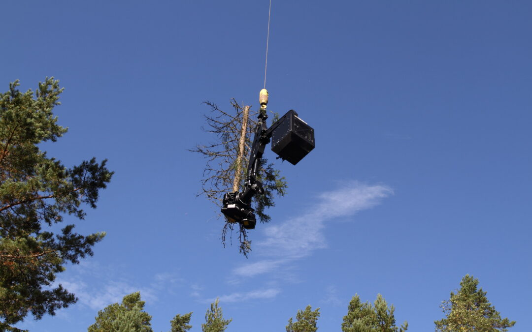 PowerGrab 2400 Removes Trees with Ease